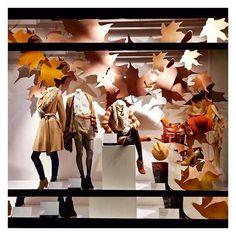 Visual Sense @visual_sense Love this #Autumn...Instagram photo | Websta (Webstagram)