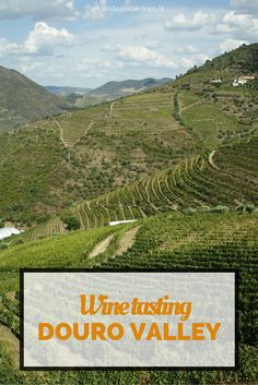 Daytrip from Porto, wine tasting and port tasting in the Douro Valley | Mooistestedentrips.nl