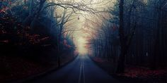 Roads Autumn Twitter Cover & Twitter Background | TwitrCovers
