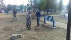 <p>Chihuahua, Chih.- El Gobierno Municipal a través de la Dirección de Mantenimiento Urbano llevó cuadrillas de la dependencia a la Colonia