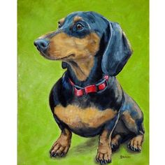 Items similar to Dachshund Dog Art print by Dottie Dracos, Black and Tan Doxie Sitting, on Lime Green Background on Etsy Dachshund Funny, Arte Dachshund, Dachshund Love, Daschund, Black And Tan Dachshund, Dachshund Puppies, Animal Paintings, Animal Drawings, Weenie Dogs