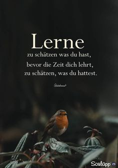 Sayings and quotes - Diy Best Tattoo German Quotes, True Words, Travel Quotes, Life Lessons, Quotations, Verses, Life Quotes, Inspirational Quotes, Wisdom