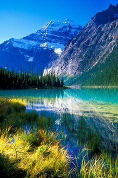 Morning at Cavell Lake and Mount Edith Cavell. Jasper National Park, Alberta, Canada