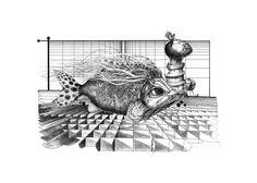 Pescia, china su cartone museale 80x100