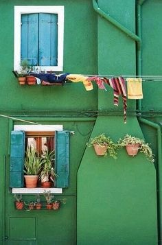 Burano Island (Venice) + Clothes Line + Green + windows Windows And Doors, Green Windows, Small Windows, Belle Photo, Shades Of Green, The Places Youll Go, My Favorite Color, Color Inspiration, Furniture Inspiration