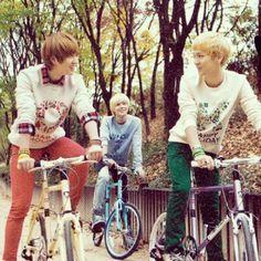 The Shinee Family