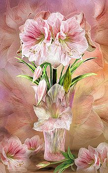 Amaryllis In Amaryllis Vase By Carol Cavalaris In 2020 Vase Flowers Art