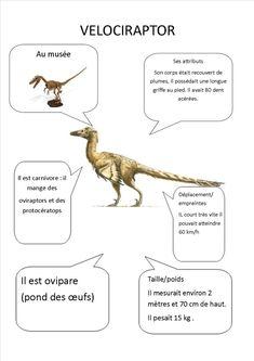 Sistema Solar, Kindergarten Activities, Science, Education, Blog, Dinosaurs, Dinosaur Projects, Dinosaurs Preschool, Science Projects
