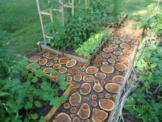 Wood disk paths - Domesticated Nomad: Garden Path