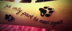 A memorial paw print tattoo for all dogs who have brought love and joy to our lives... and for cai who joined the angels far too early. #tattoo #memorial #pets #paw print tattoo