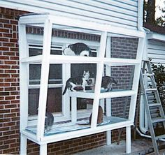 Cat House Idea: Could work, wouldn't have to paint wood white, downsize top if used.