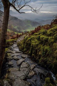 Coniston, Lake District, England via Earth Porn fb Foto Nature, All Nature, Beautiful World, Beautiful Places, Beautiful Scenery, Beautiful Artwork, Simply Beautiful, Amazing Places, Lake District