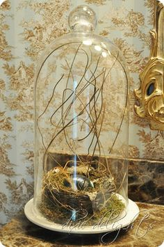 Glass cloche with nest and egg
