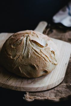 bread in an hour + spicy curried kabocha squash soup Kabocha Squash Soup, Bread Recipes, Cooking Recipes, Cooking Tips, Local Milk, Our Daily Bread, Artisan Bread, Bread Baking, Yeast Bread