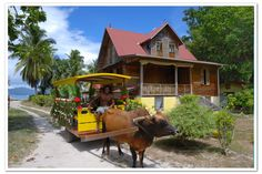 Oxcart and colonial house in Seychelles.  Tropical Paradise ...