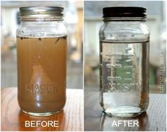 Before and After Water Pollution Experiment.