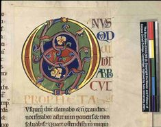 Color Plates of The Bury Bible Illuminated Letters, Illuminated Manuscript, Corpus Christi College, Needlepoint Designs, Calligraphy Letters, Medieval Art, Initial Letters, Bury, White Ink