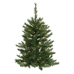 Vickerman 3 x 26 Imperial Pine Wall Tree with 50 Clear Lights *** More info could be found at the image url.