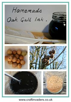 Oak Gall Ink is made from the crushed up galls found on Oak trees. This tutorial shows you how we made ink using galls, a nail and vinegar. Crafts For Kids, Arts And Crafts, Paper Crafts, Diy Crafts, Beach Crafts, Summer Crafts, How To Make Ink, Craft Tutorials, Craft Projects