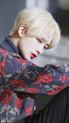 Woozi, Mingyu, Hip Hop, Jeonghan Seventeen, Won Woo, Seventeen Wallpapers, Best Kpop, Pledis Entertainment, Seungkwan