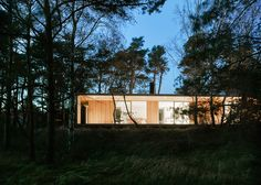 This wooden summerhouse was designed for a patch of woodland by the Swedish coastline.