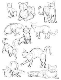 Cat Sketch, Sketch Art, Art Drawings Sketches, Contour Drawings, Sketch Tattoo, Tattoo Cat, Sketch Design, Drawings Of Cats, Human Sketch