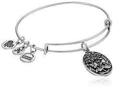Alex and Ani Because I love you, Sister II Expandable Rafaelian Silver-Tone Bangle Bracelet