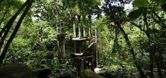 Sir. Edward James Surreal Architecture in Las Pozas Xilitla