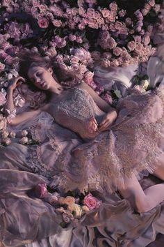 The Australian Ballet presents a Year of Beauty - 2015 Season