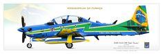 BRAZILIAN AIR FORCE . FORÇA AÉREA BRASILEIRAESQUADRÃO DE DEMONSTRAÇÃO AÉREA Esquadrilha da Fumaça