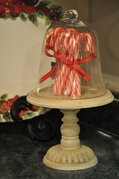 candy cane under cloche