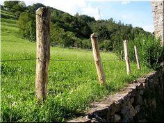 Kerítés Zulu, Fa, Pergola, Wood, Plants, Fences, Picket Fences, Woodwind Instrument, Timber Wood
