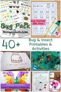 1133 Best Bugs & Insect Activities for Kids images in 2019
