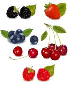 Berries vector set