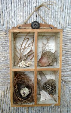 nature shadow box - I wonder where my bird nest is packed? :)