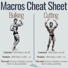 MACROS CHEAT SHEET FOR BULKING AND CUTTING - You want to bulk or you want to cut? Here are the macros you need to be eating. - The truth is the process is very similar. Get a minimum protein of so if you're that's of protein per day. Fitness Workouts, Weight Training Workouts, Gym Workout Tips, At Home Workouts, Fitness Motivation, Weight Lifting Motivation, Workout Men, Training Tips, Fitness Nutrition