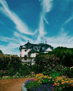 Have you ever seen a pink castle? I have one right near were I live and it's…
