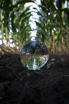 Lensball is a sleek crystal ball that allows you to capture deeply immersive experiences in ultrasharp wide-angle. Wide Angle Photography, Macro Photography, Creative Photography, Amazing Photography, Bubble Photography, Satisfying Pictures, Scenery Wallpaper, Glass Ball, Crystal Ball