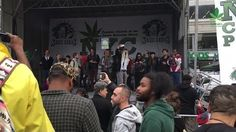 Did you get to attend this cannabis parade? #StonedTube
