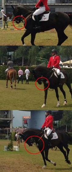 """Competitive Dressage is demonized for it's use of Rollkur and rightly so but it is not the only discipline that uses this abusive technique. This picture of a jumper rider (who?) shared from the German group """"Deine Stimme Gegen Rollkur"""" photos taken of a Canadian rider at this year's CHIO in Aachen Germany."""