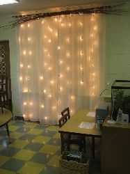 Sheer curtains, white lights, and branches add light, nature, and whimsy.  This would be a gorgeous headboard.