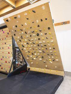 Boulder Climbing, Rock Climbing Holds, Flowering Vine Plants, Indoor Climbing Wall, Bouldering Wall, Tree Photography, Plant Wall, Home Repair, Diy Wall