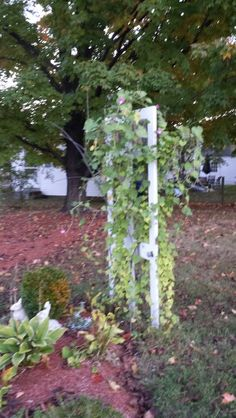 An Easy To Make Trellis For Climbing Vines To Me A Fancy