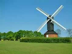 Mountnessing Post Mill on a sunny day, behind a hedge