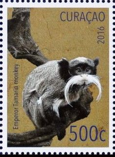 Stamp: Emperor Tamarin (Saguinus imperator) (Curaçao) (Year of the Monkey) Mi:CW 384