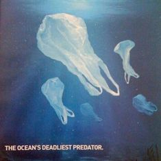 The ocean's deadliest predator: plastic bags. Many large marine animals mistak. - My Favorites Bag For Women Sketch Manga, Save Our Oceans, Save Our Earth, Design Graphique, Environmental Issues, Marine Life, Mother Earth, Funny Pictures, Creatures