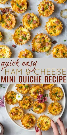 These easy Ham & Cheese Mini Quiches are quick to make and SO delicious! Cheesy bites wrapped in flaky phyllo dough, they're perfect for Sunday Brunch. photography Easy Ham & Cheese Mini Quiches Perfect for Sunday Brunch Easy Brunch Recipes, Healthy Brunch, Healthy Recipes, Easter Recipes, Cooking Recipes, Recipes Dinner, Healthy Foods, Mini Quiches, Easter Brunch Menu