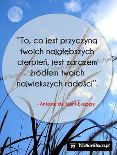 To, co jest przyczyną... #SaintExupery-Antoine-De,  #Ból,-cierpienie,-łzy, #Radość Water Tower, Forgiveness, Everything, Texts, It Hurts, Poetry, Sad, Mindfulness, Humor