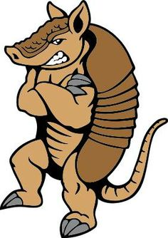 1000 Images About Armadillo Cartoons On Pinterest