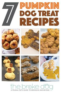 Fall is coming — and that means pumpkins flavored. Best Picture For Dog safe cake recipe For Your Pumpkin Dog Treats, Diy Dog Treats, Homemade Dog Treats, Dog Treat Recipes, Healthy Dog Treats, Dog Food Recipes, Cake Recipes, Puppy Treats, Homemade Food